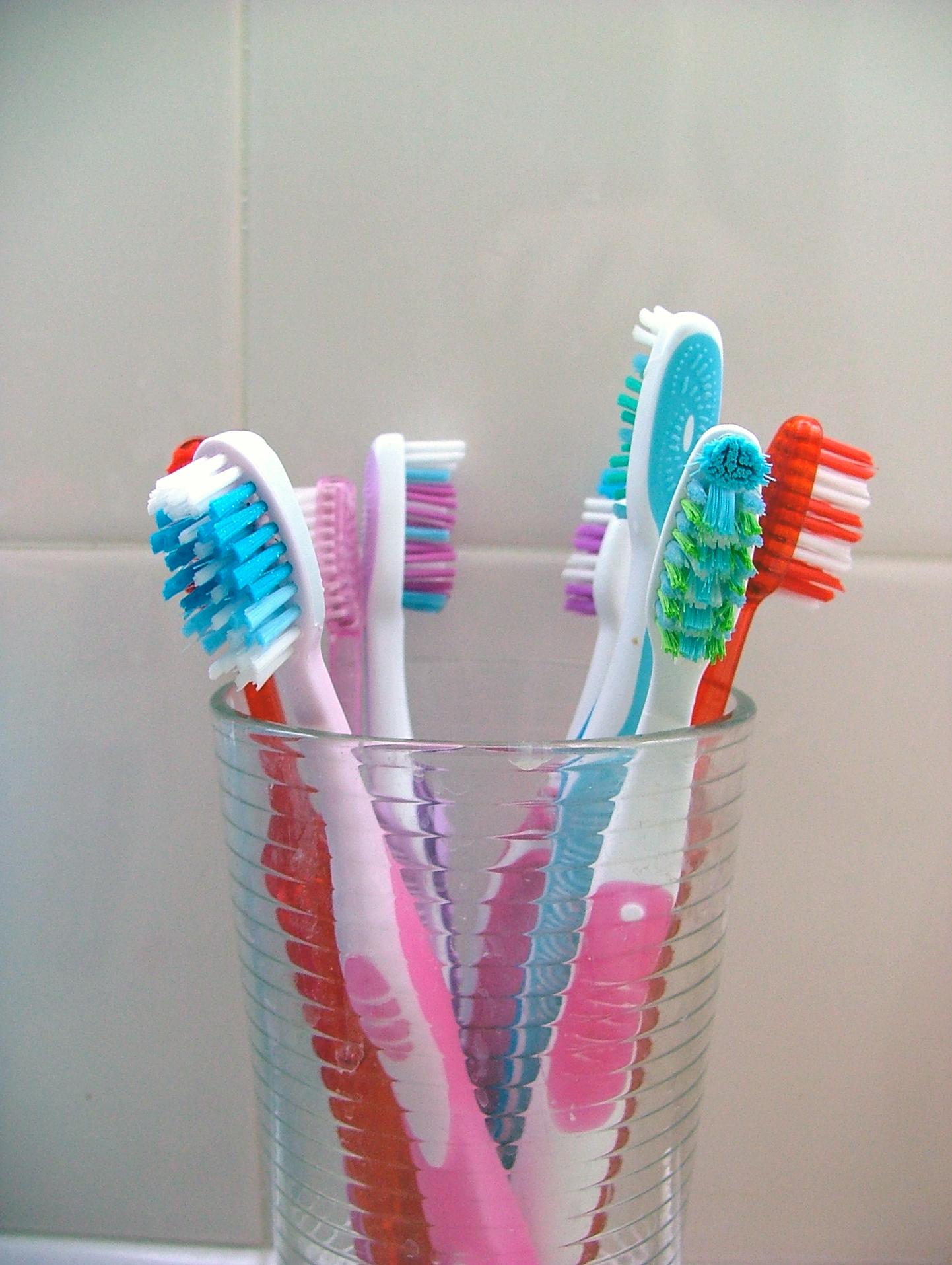 תמונה של מברשות שיניים רבות בכוס. אפשר להיות רגועים - יש סיכוי אפסי להדבקה על ידי שימוש במברשת שיניים משותפת